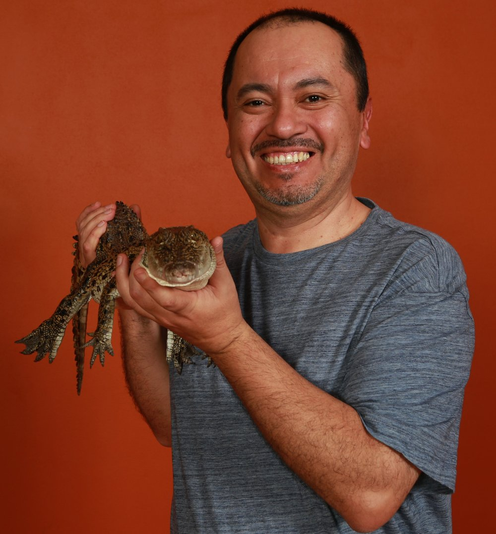 Jaime Gongora   Current director of ICGWG.  Jaime  is an Associate Professor at the  University of Sydney .  Jaime is directing current efforts to generate and analyse genome data for 20 species of crocodilians. Jaime's team is interested in comparative genomics with a focus on patterns of diversity, immune systems, endogenous retroviruses, population genomics and traits of importance for diseases and management.   Contact email:  jaime.gongora@sydney.edu.au   Websites:  JaimeGongoraResearchGate    @JaimeGongoraSyd Twitter