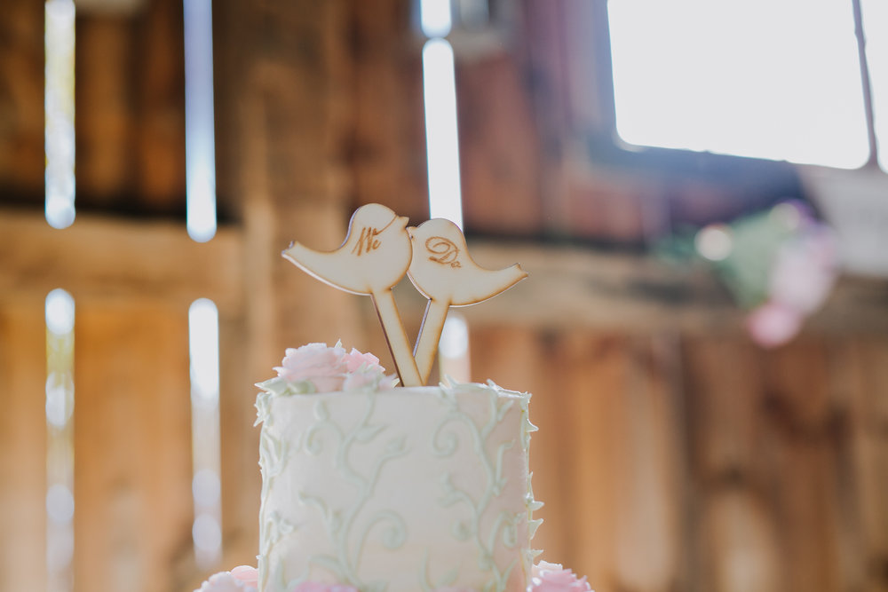 Wedding Reception at Pinehall at Eisler Farms-4.jpg