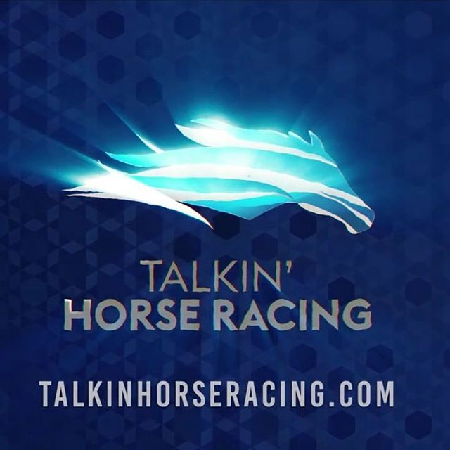 Check out pictures from this weeks episode of Talkin Horse Racing #woodbine #forterie #horse #horses #racing #webseries #thoroughbred #horsesofinstagram #saturday #claiming #weekend @mrwillwong @stevechircop @woodbineracing @forterieracetrack