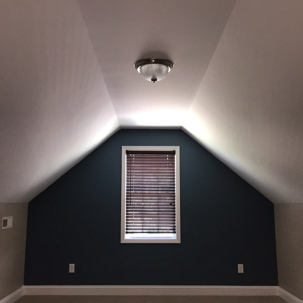 REPAINT — ALL CEILINGS