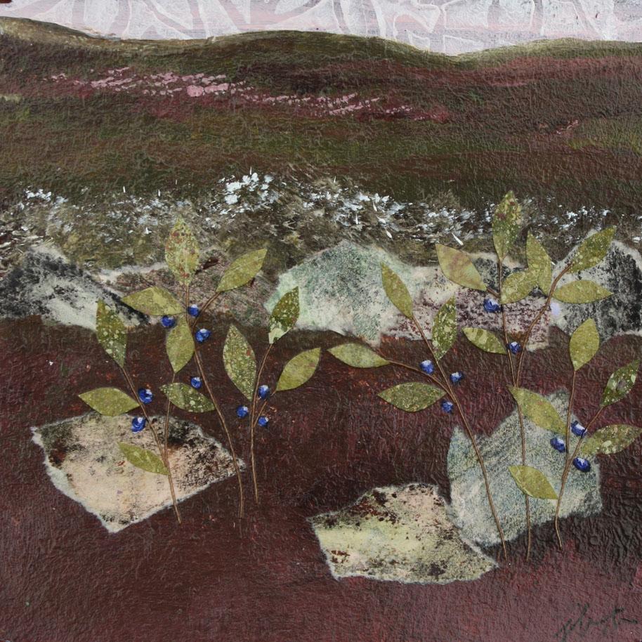 blueberryfield.jpg