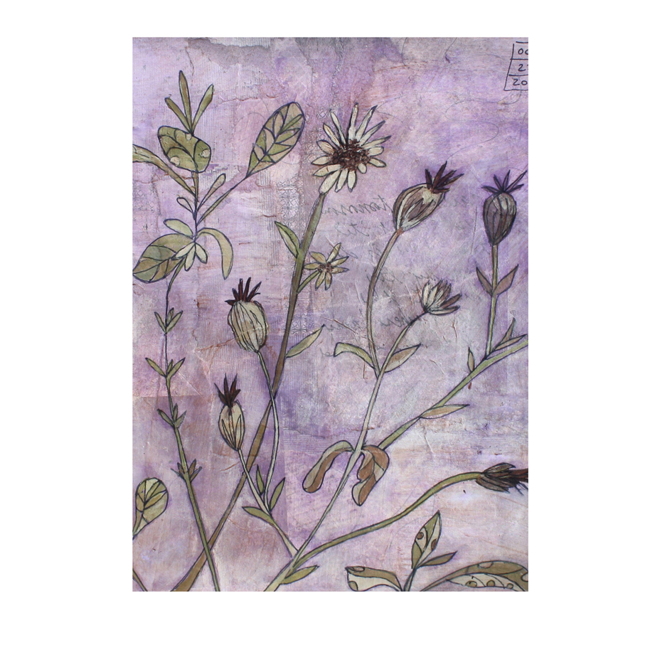 Sage and Rose Campion Card.jpg