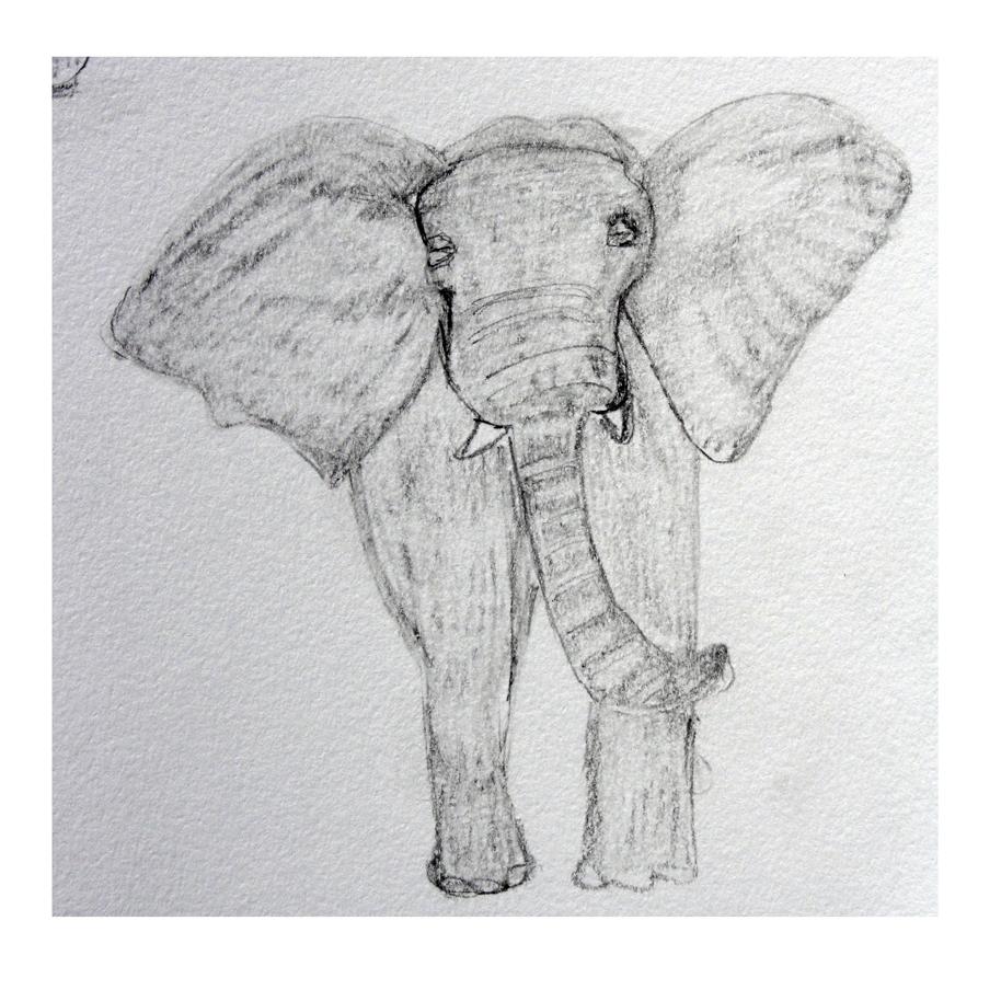 Elephant #3.jpg