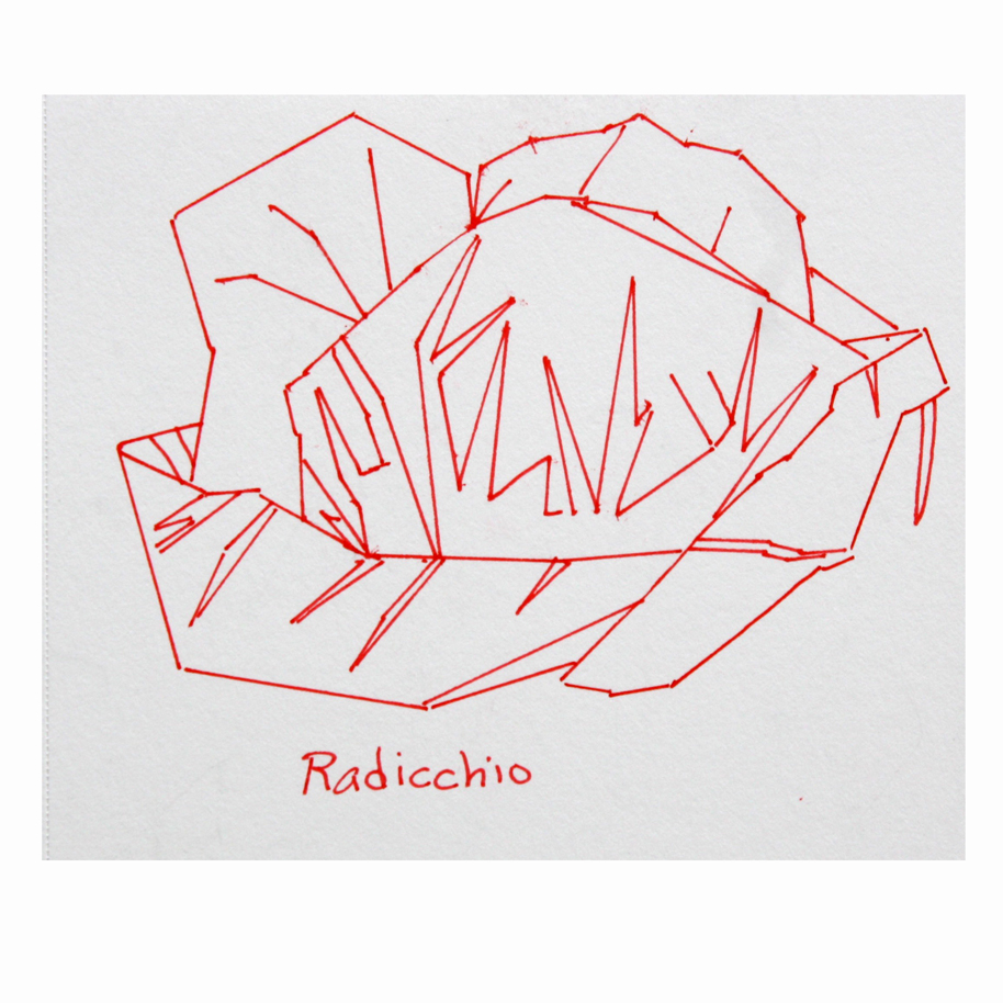 Radicchio Red Ruler Drawing.jpg