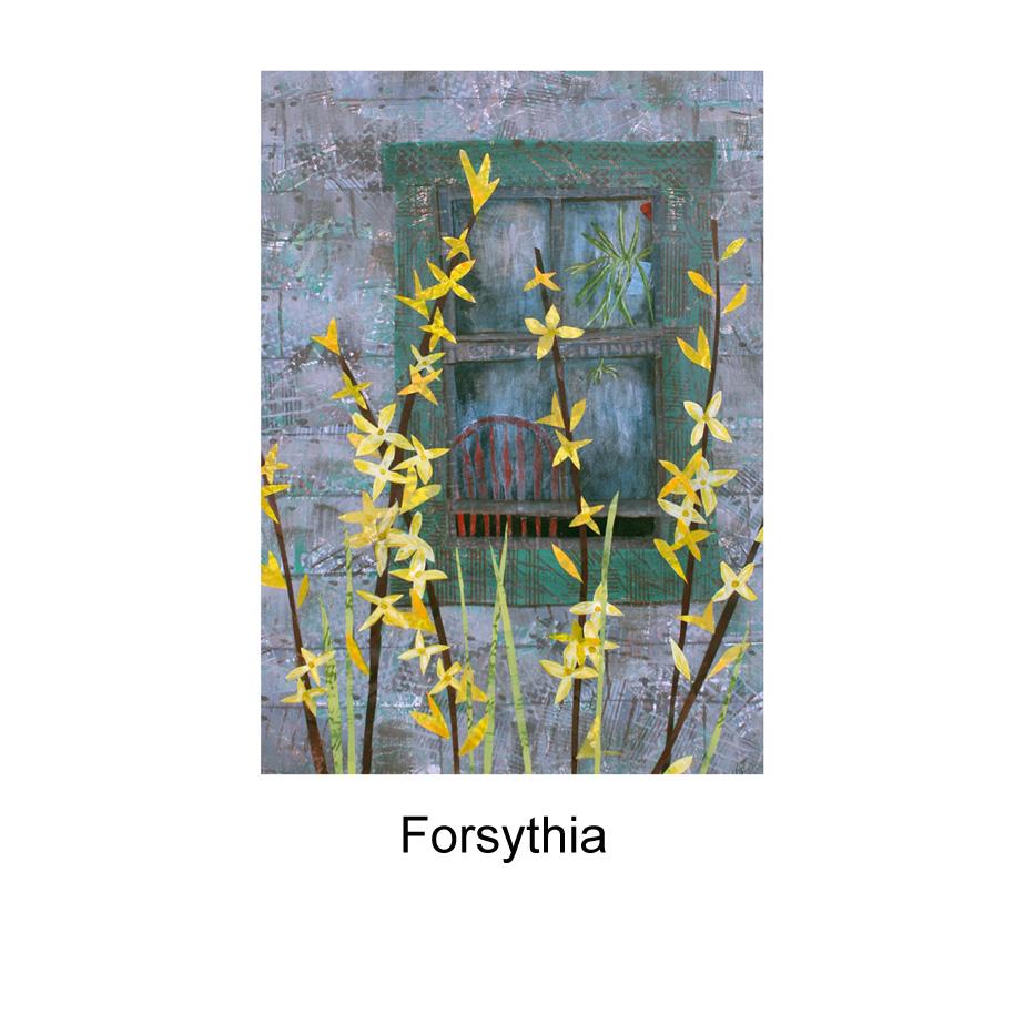 Forsythia.jpg