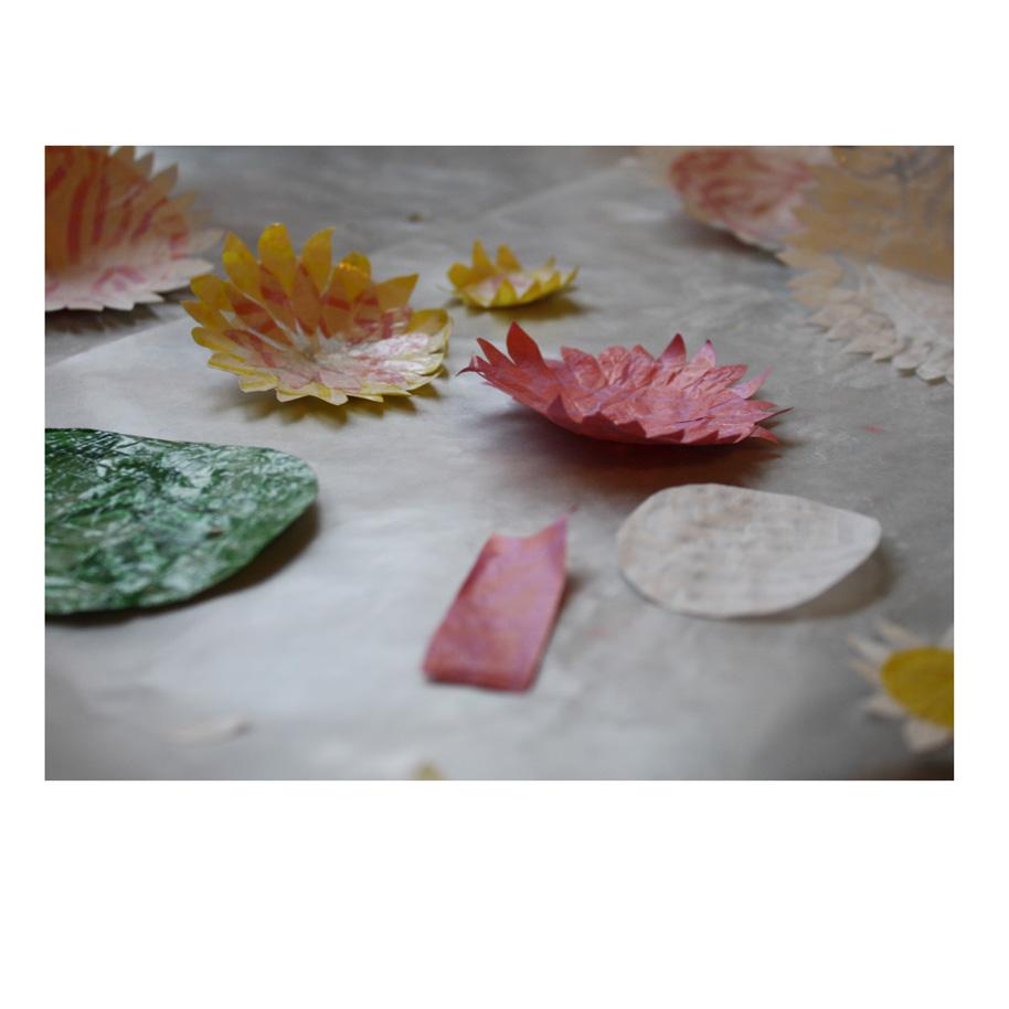Collage flower parts.jpg