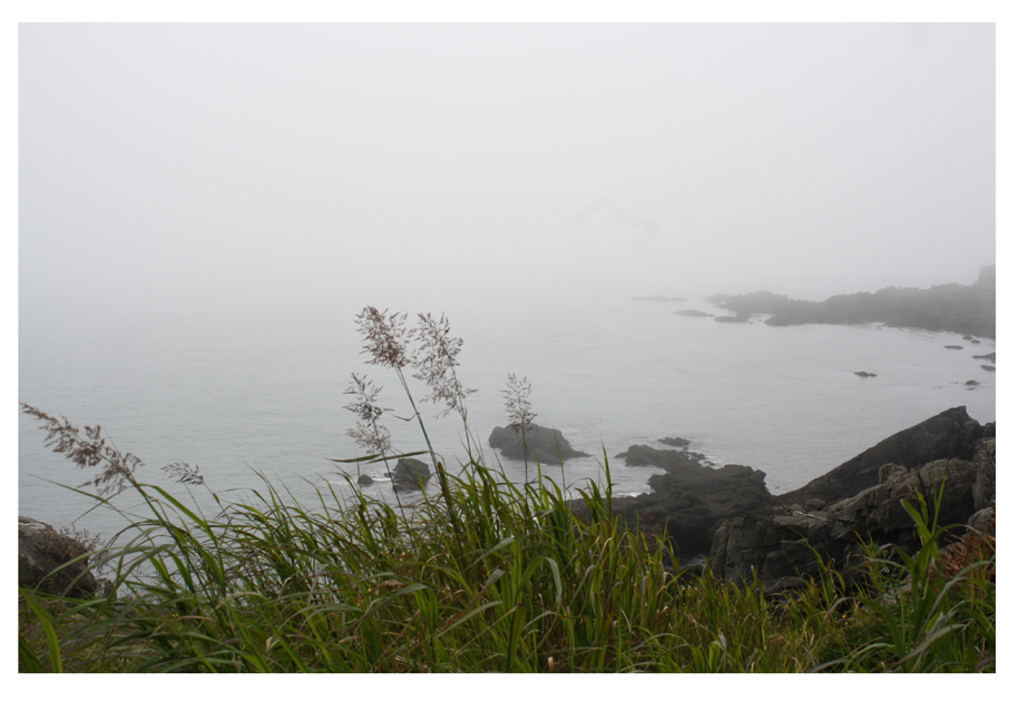 View of the foggy ocean