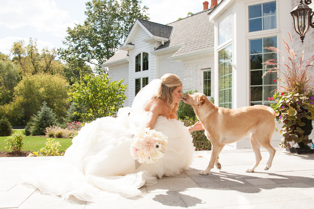 bride_with_dog.jpg
