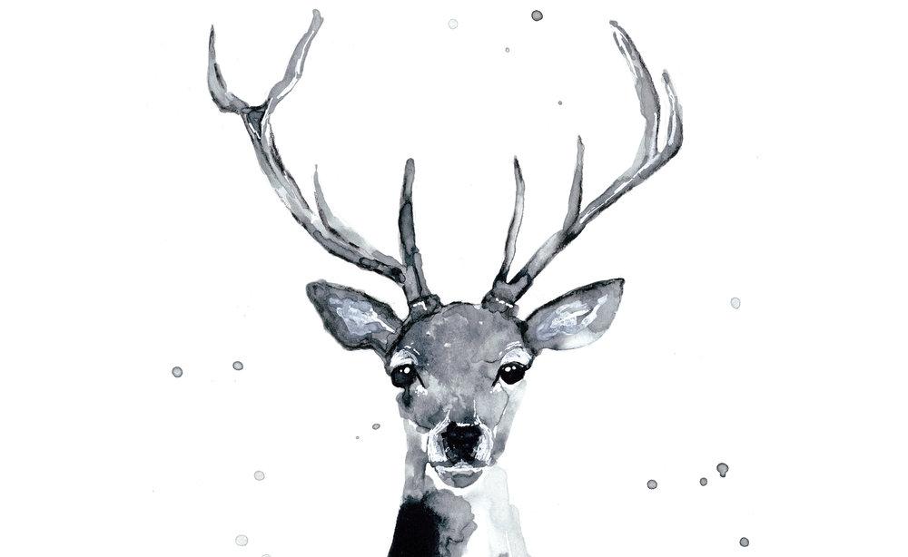 deer homepage.jpg