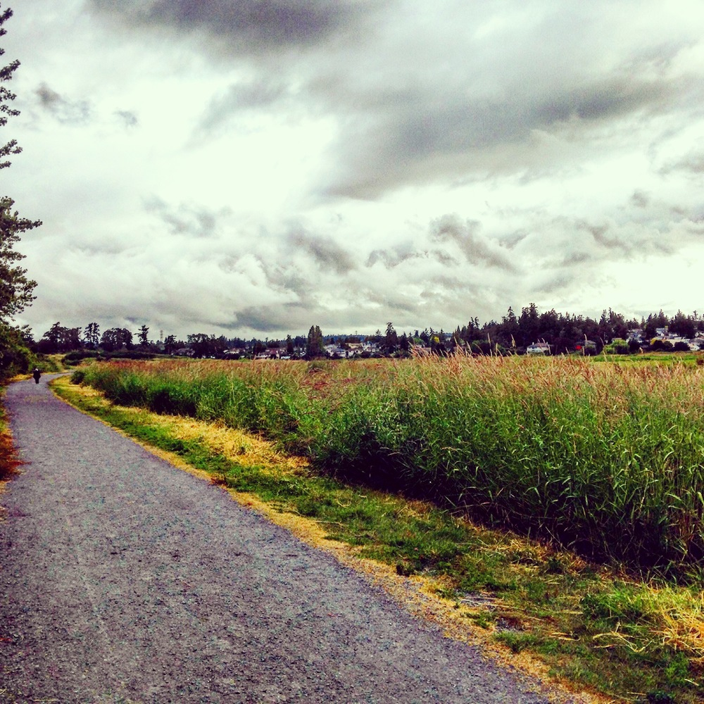 Endless trails for running in Victoria.