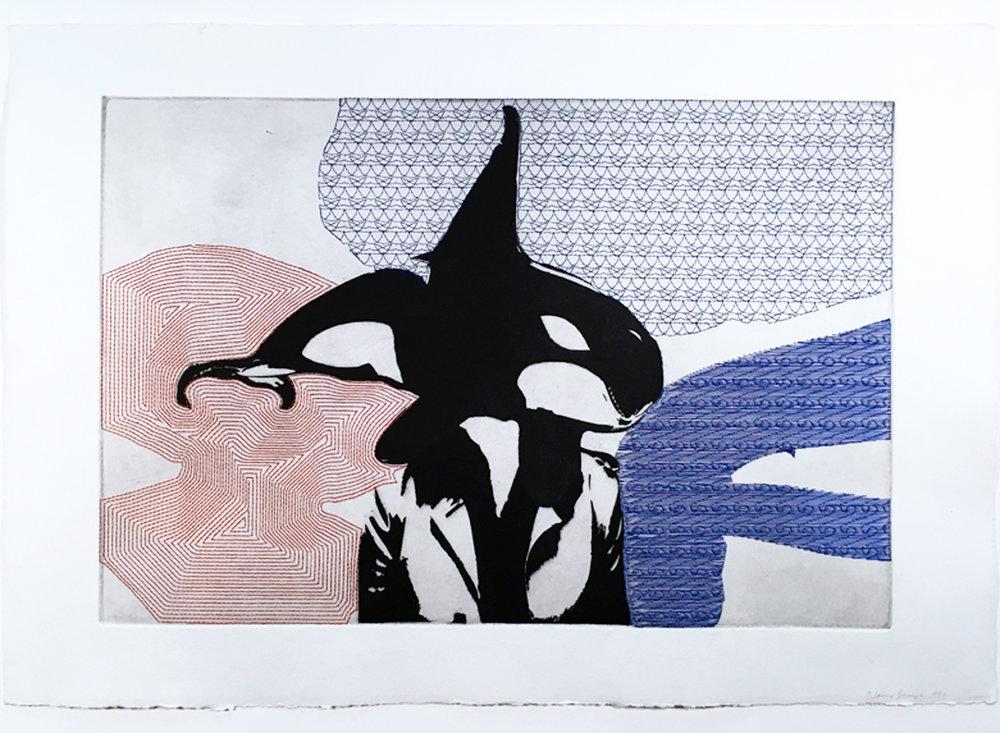killerwhale_11x15_72_web.jpg