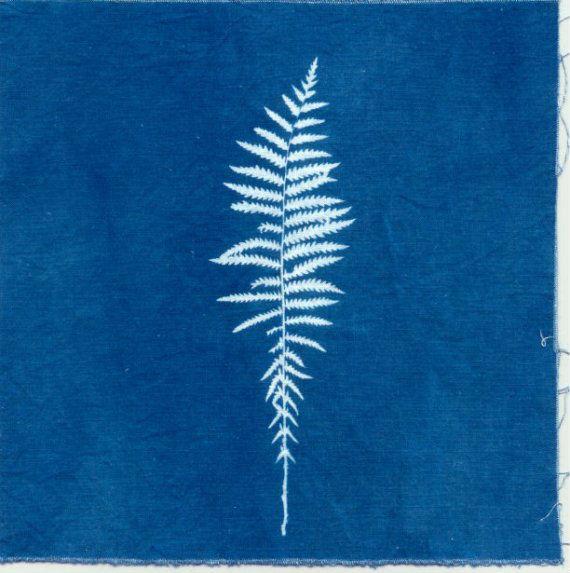 fern print cyanotype