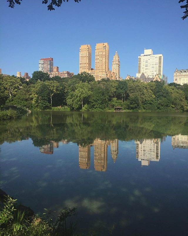 Spent my early Saturday morning getting lost in the park and then literally reflecting by reflections.