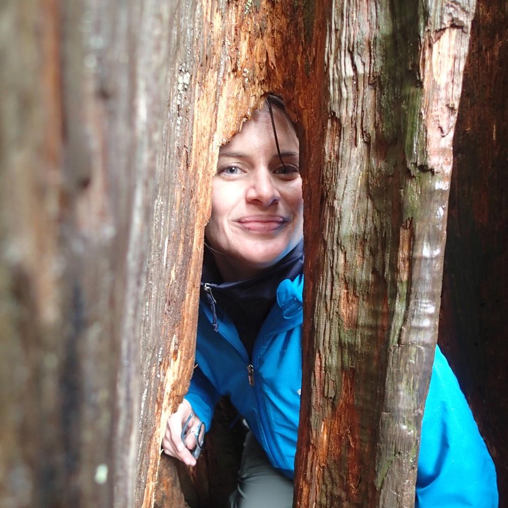 Jessica VanLaningham; curious, puzzler, seeker.