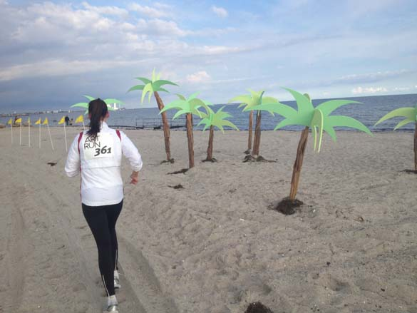 Our palm trees on the beach! Back in their natural habitat.