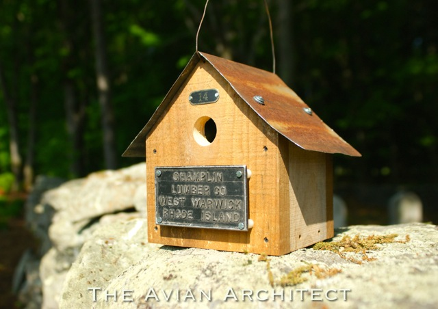 The Avian Architect