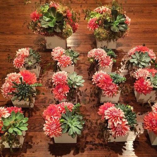 Floral Colab