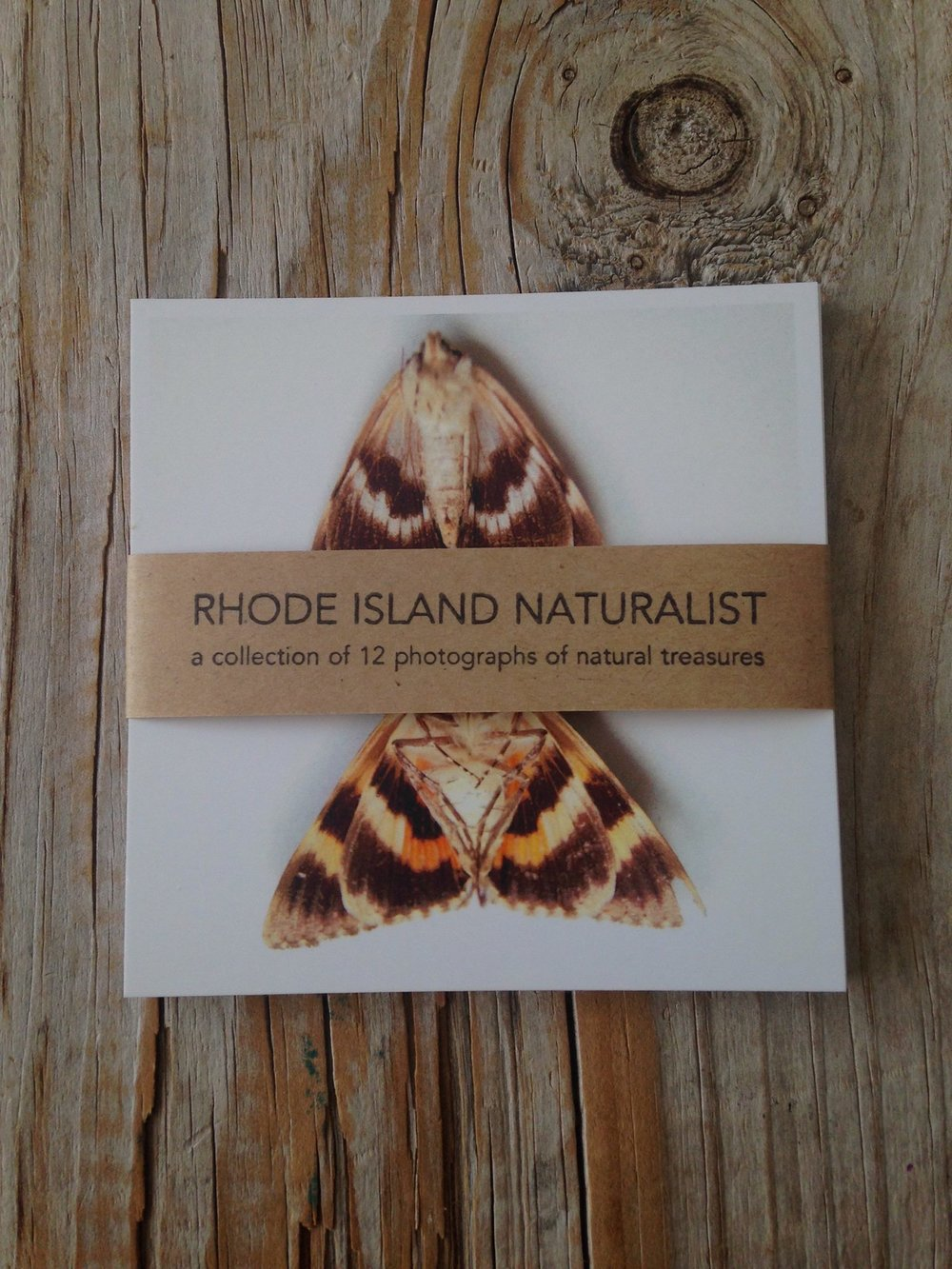 Rhode Island Naturalist photo pack.jpg