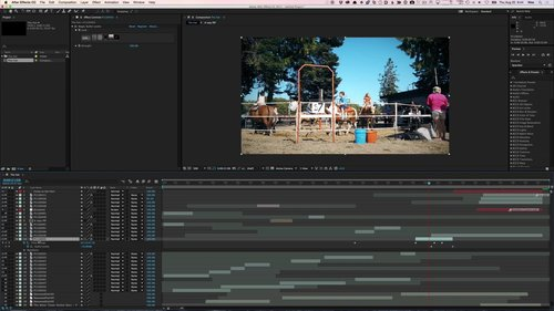 torrent fcpx
