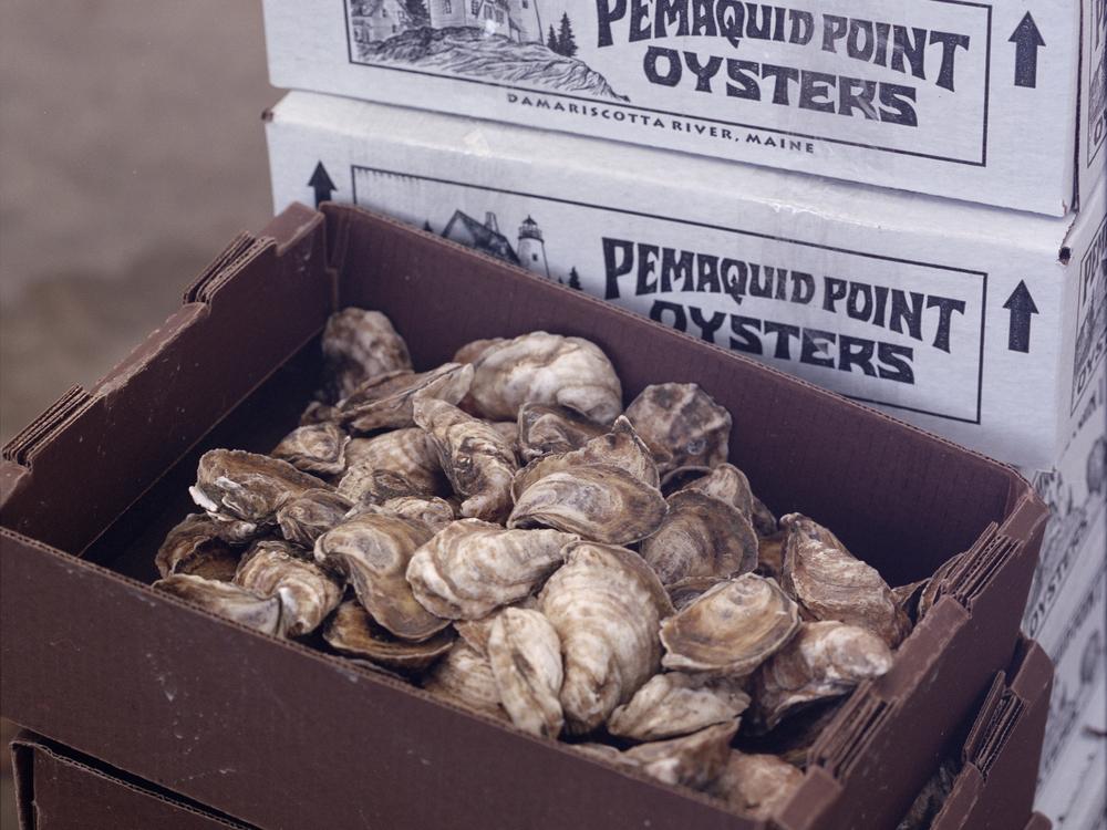 Oysters_Roll24-9.jpg