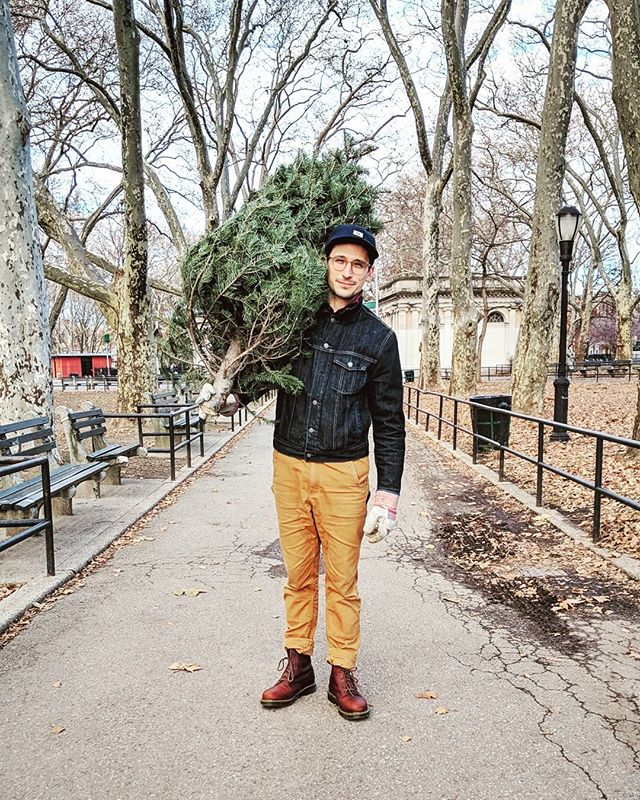 🌲Hello, I've got a tree.🌲 📷:@kate_emerson |#christmastree #greenpoint #nyc