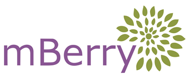 Private Equity Practice — Mulberry Tree Partners