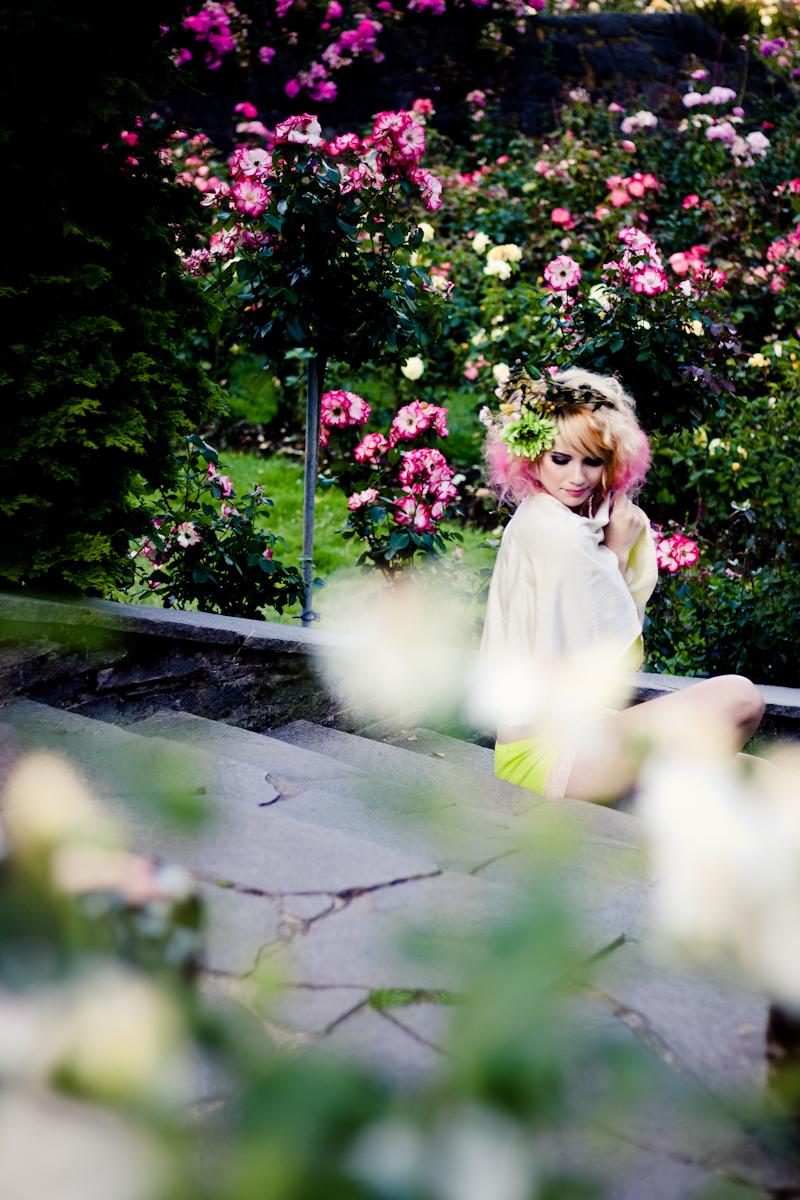 Echinacea_LL_July2012_4.jpg