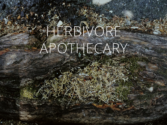 EllefolkGazette_HerbivoreApothecary_Landscape