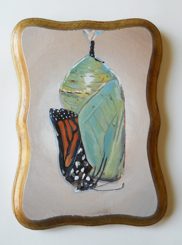 "monarch with chrysalis , acrylic on wood 5"" x 7"""