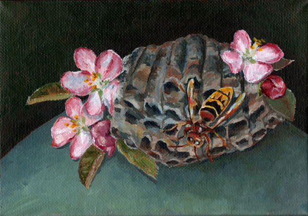 "hornet nest and apple blossoms , acrylic on canvas 7"" x 5"""