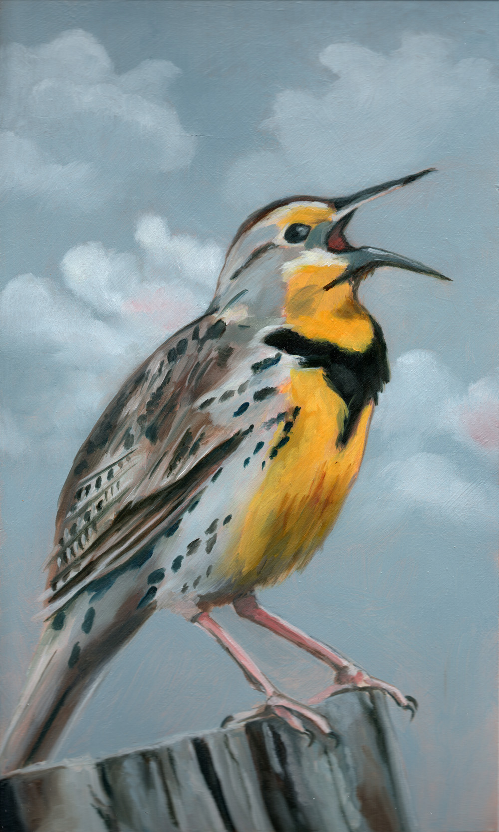 "western meadowlark   oil on wood 6.25"" x 10.25"""