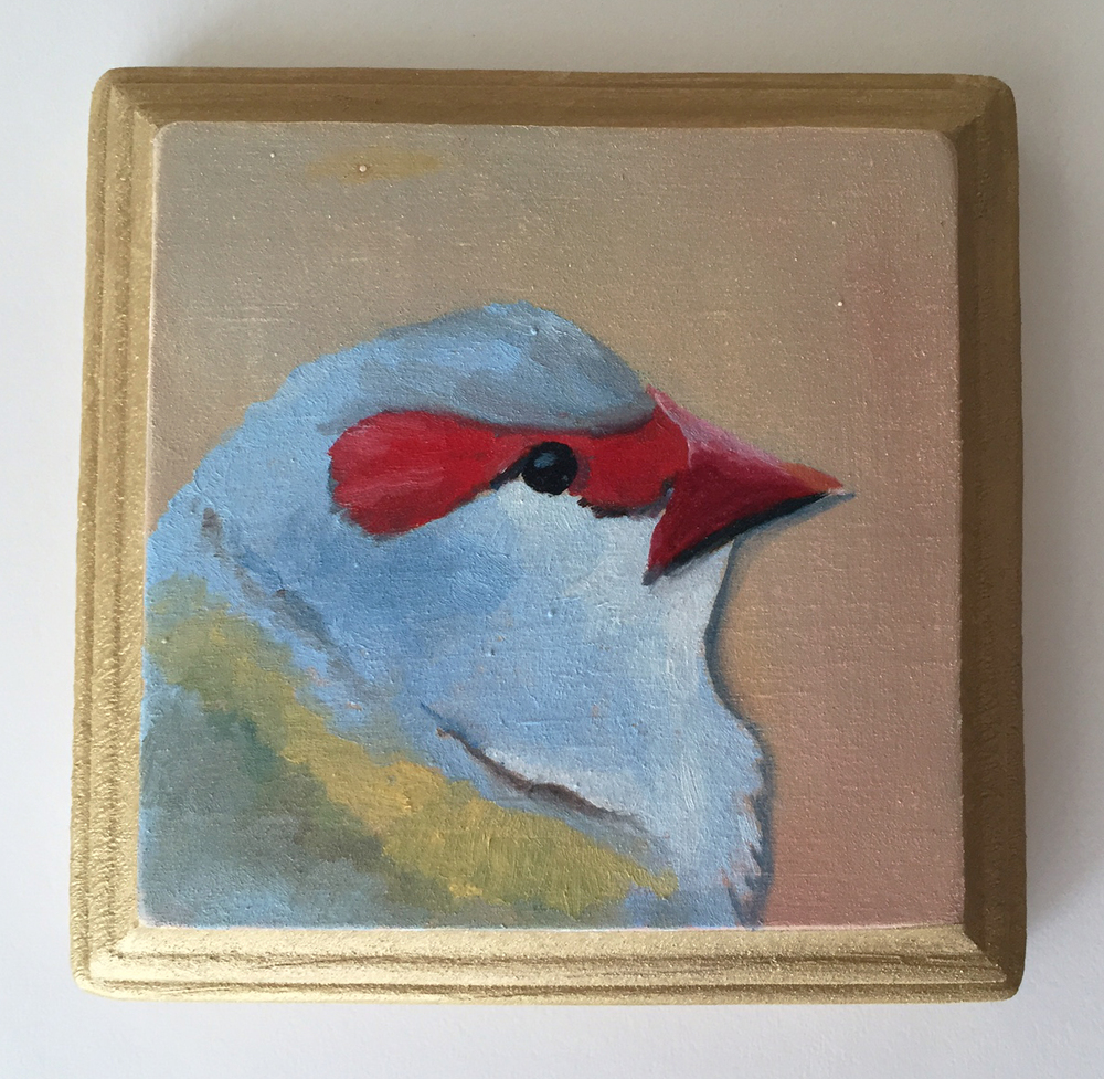 red browed finch   oil on wood 4""