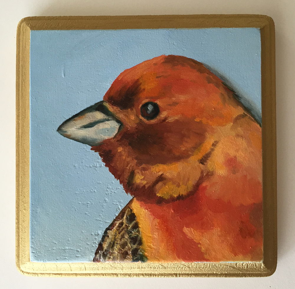 red headed bunting   oil on wood 5""