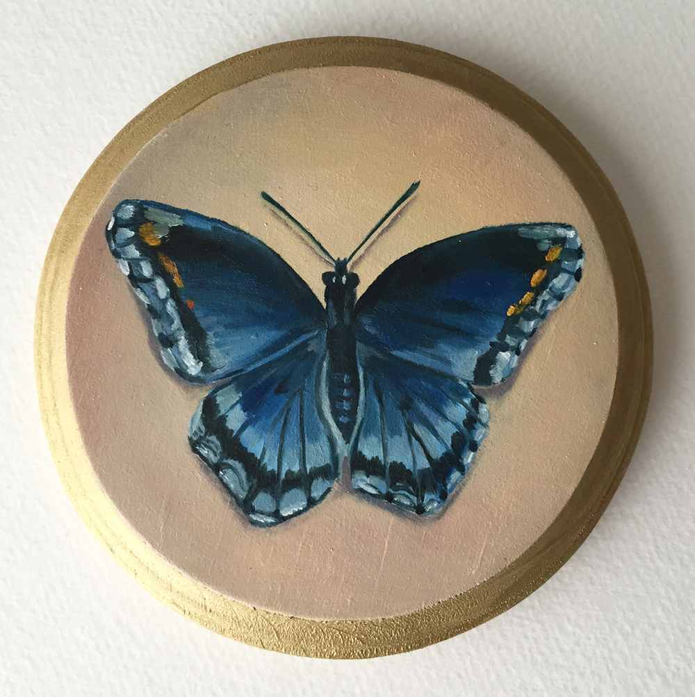 red spotted purple butterfly   oil on wood 5""