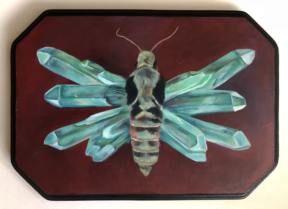 "eumorpha of manifestation   oil on wood 9.5"" x 6.5"""