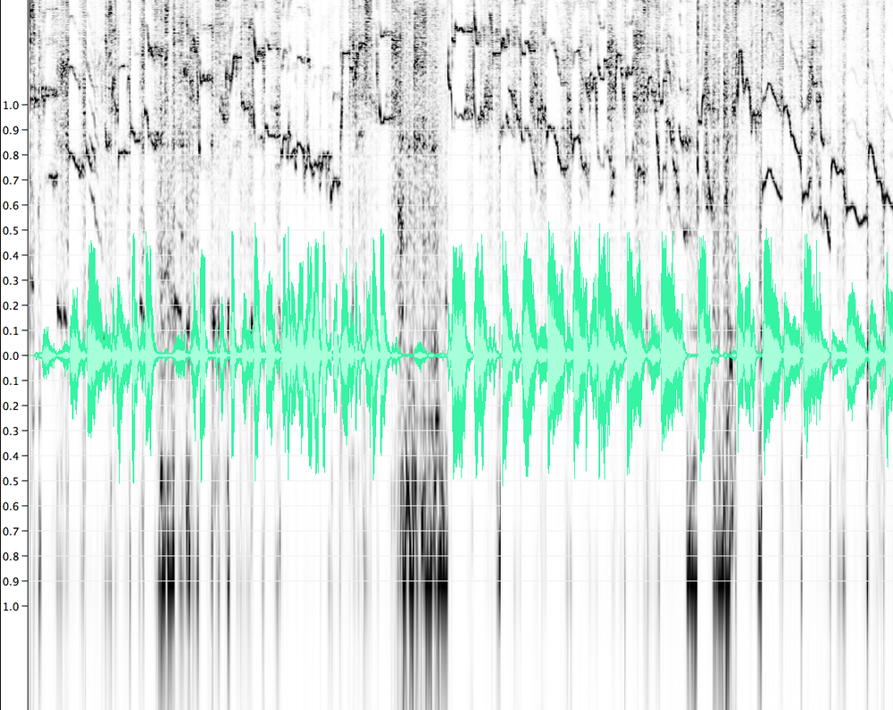 Aural Sex_Spectrogram