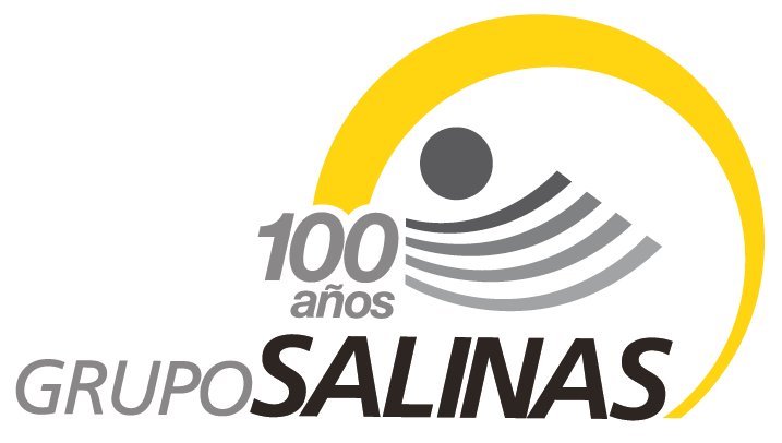 GRUPO_SALINAS.png
