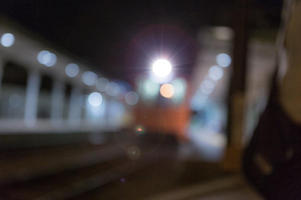 _MG_8335.jpg