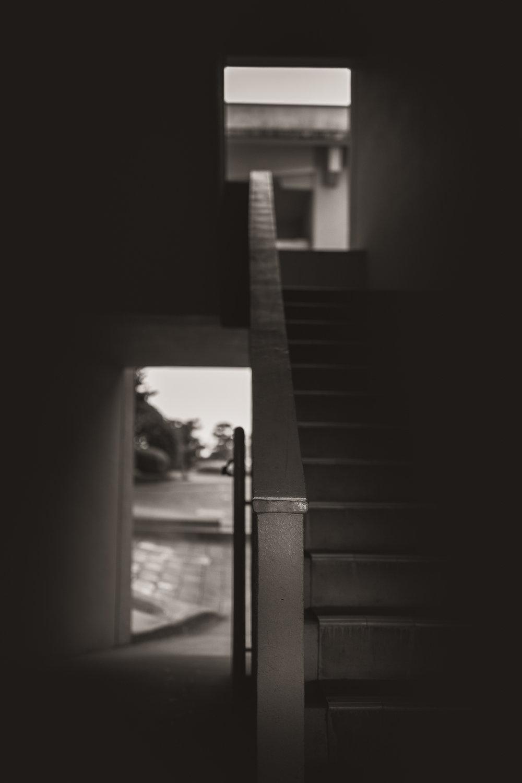 _MG_2385.jpg