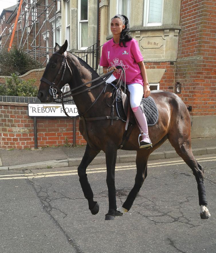 Jordan horse