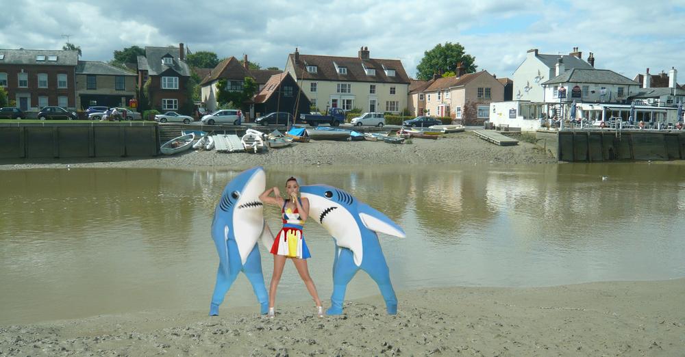 Katy shark