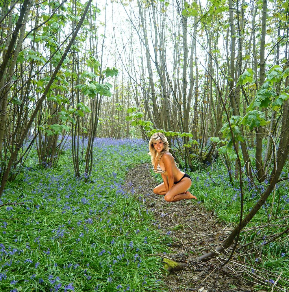 The Wivenhoe fox