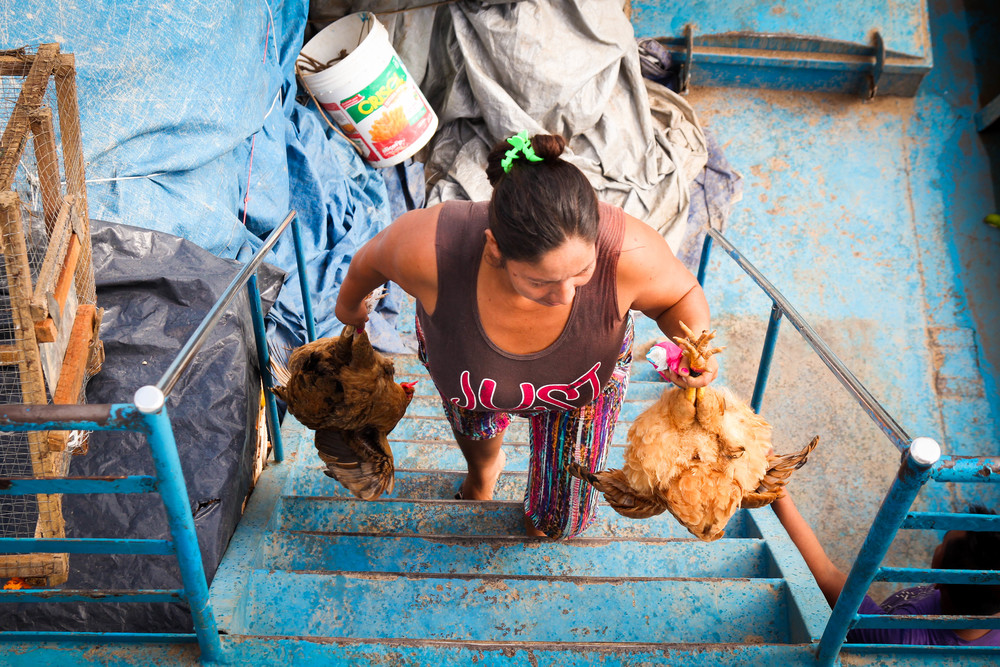 Woman in a port town bringing dinner (two chickens) onto the boat.