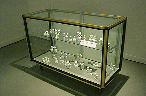 SP100GlassCase.jpg