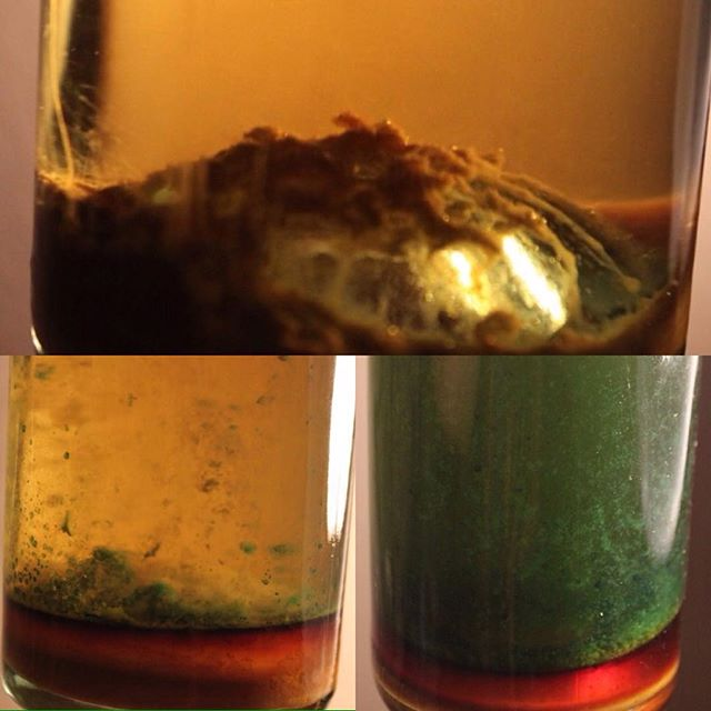 The progress of green coffee from a regular tincture to a Spagyric tincture. (Over the course of 3 days)