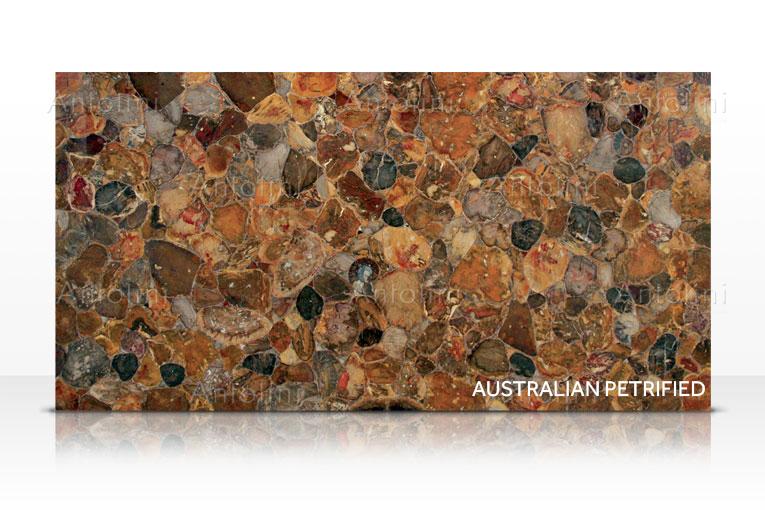 002-a_australian_petrified_wood.png