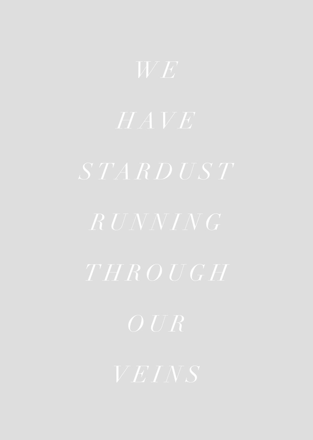 Stardust_JasmineDowling