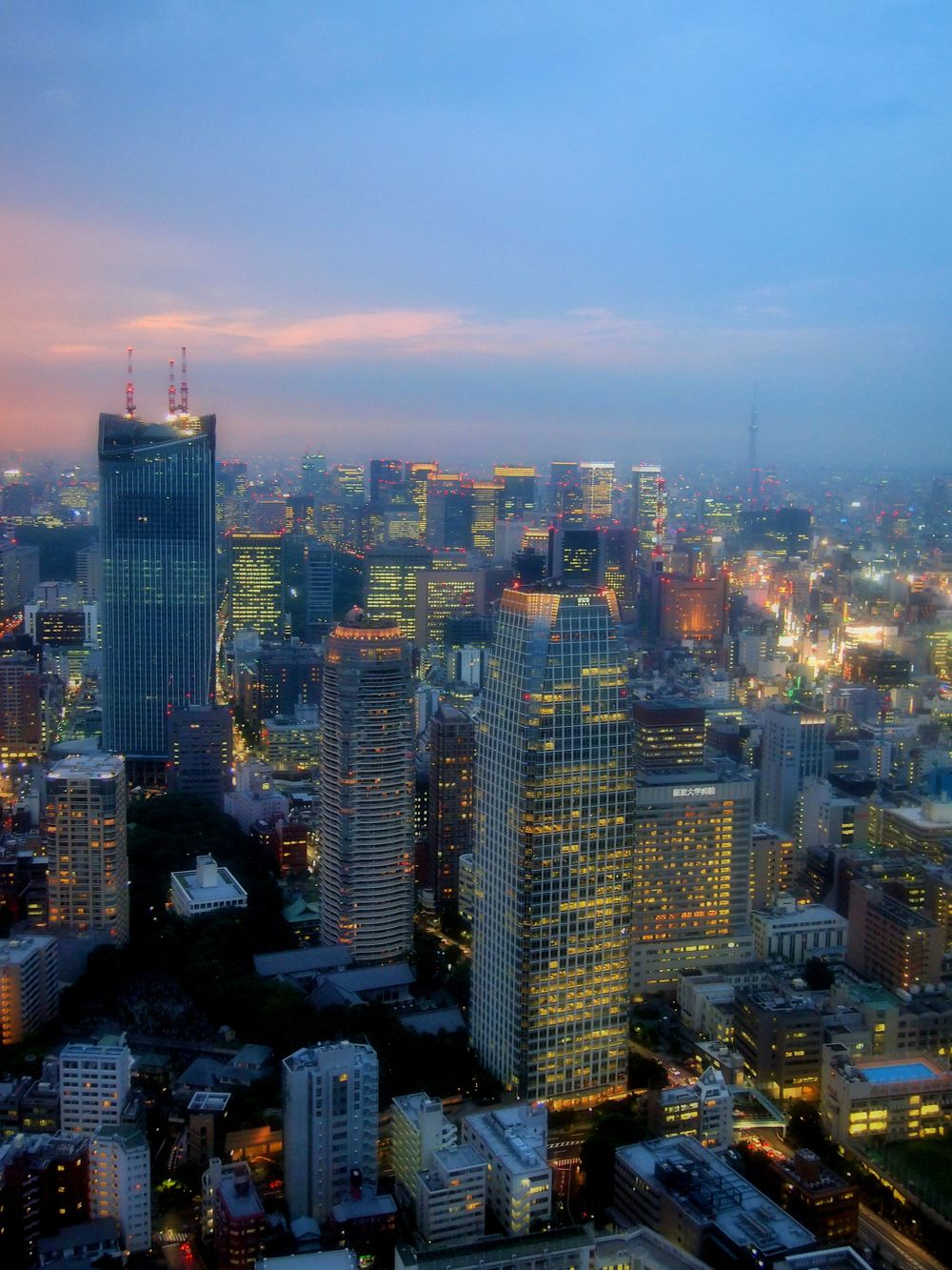 tokyo_nightview.jpg