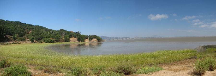 Bay View from China Camp Park
