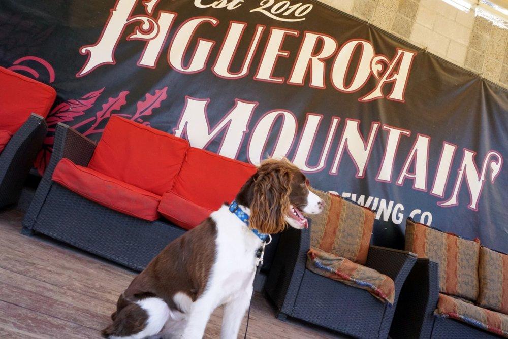 Figueroa MountainBrewing Co. - Buellton, CA